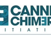 Three Winners Announced For The Final Cannes Chimera Challenge