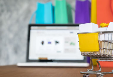 PLANTING SEEDS OF LOYALTY IN E-COMMERCE