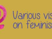 VARIOUS VISIONS ON FEMINISM